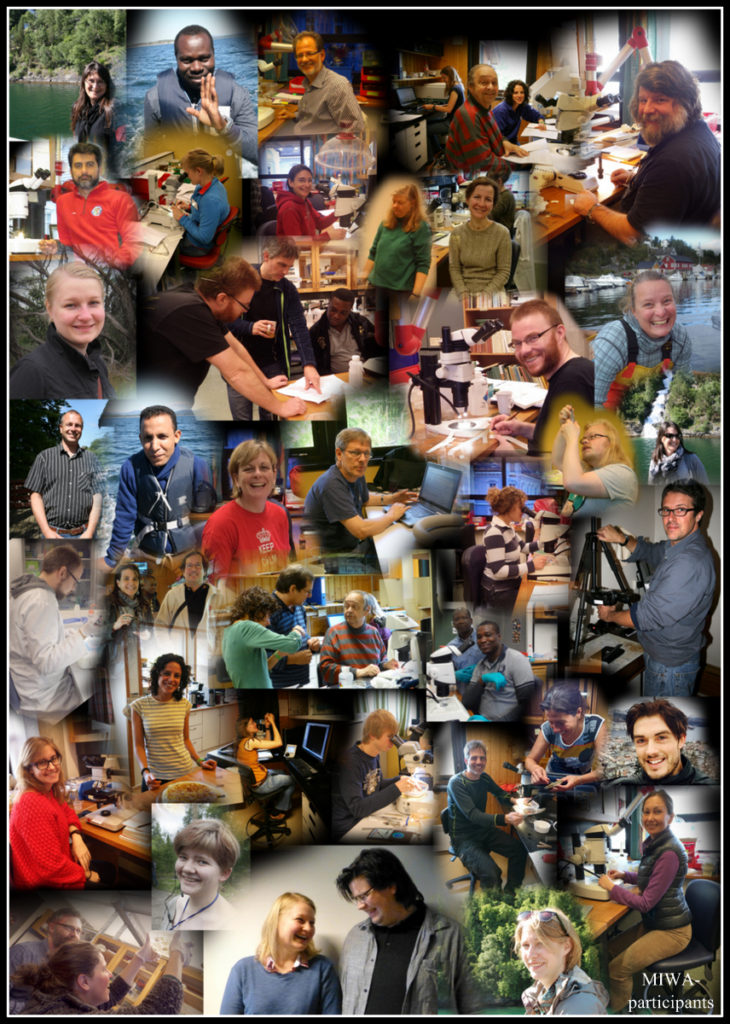 Our wonderful collaborators. Photos by various of the pictured, montage by K.Kongshavn