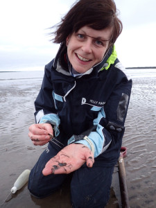Collecting Magelona samples on my favourite sampling beach, Berwick-upon-Tweed, Northumberland. A beach known to many polychaetologists through the work of naturalist George Johnston.